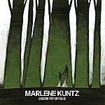 Marlene Kuntz Canzoni Per Un Figlio