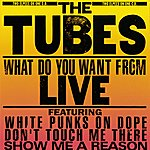The Tubes What Do You Want From Live
