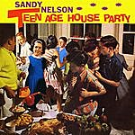 Sandy Nelson Teenage House Party