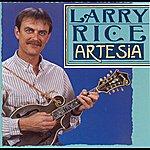Larry Rice Artesia