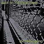 Chain Gang Back On The Chain Gang-The Ultimate Tribute To The Pretenders