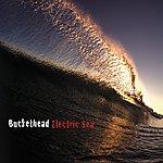 Buckethead Electric Sea