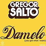 Gregor Salto Damelo (You Got What I Want)