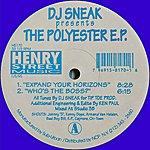 DJ Sneak Dj Sneak Presents The Polyester Ep