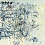 Lambchop What Another Man Spills