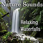 Nature Sounds Relaxing Waterfalls: Nature Sounds For Relaxation, Meditation, Massage Therapy, Spa And Sleep
