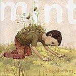 Mint Magnetism
