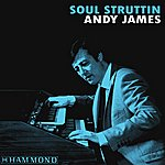 Andy James Soul Struttin