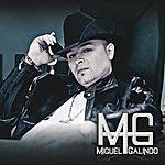 Miguel Galindo Tal Vez No Supe Amarte - Single