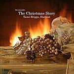 Tami Briggs PM Holiday: The Christmas Story
