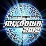 MC Mario Mixdown 2012