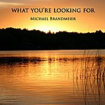 Michael Brandmeier What You're Looking For - Single