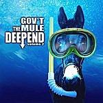 Gov't Mule The Deep End Vol. 2