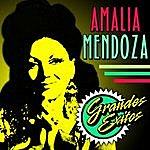 Amalia Mendoza Grandes Exitos