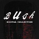 Bush Bush Digital Collection