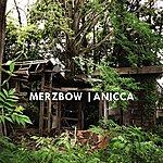 Merzbow Anicca