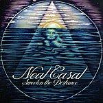 Neal Casal Sweeten The Distance