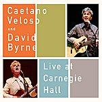 David Byrne Live At Carnegie Hall