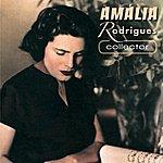 Amália Rodrigues Amália Rodrigues (Feat. Domingos Camarinha, Santos Moreira) [Collector]