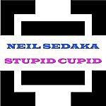 Neil Sedaka Stupid Cupid