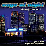 Poet On Watch Sage At Night: Latin Nu Jazz Soul, Vol. 1