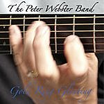Peter Webster Gold Ring Glinting
