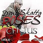 Celsius Don't Skata Roses