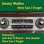 Jimmy Walker How Can I Forget