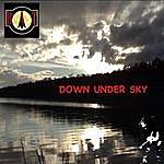 Bat Down Under Sky