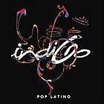 Indigo Pop Latino