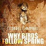 Cornell Campbell Why Birds Follow Spring
