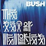Bush The Sea Of Memories (Special Edition)
