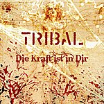 Tribal Die Kraft Ist In Dir