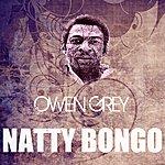 Owen Grey Natty Bongo
