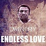 Owen Grey Endless Love
