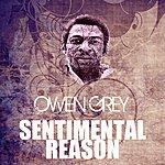Owen Grey Sentimental Reason