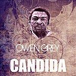 Owen Grey Candida
