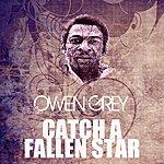 Owen Grey Catch A Fallen Star