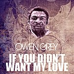 Owen Grey If You Didn't Want My Love