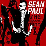 Sean Paul She Doesn't Mind  (3-Track Single)