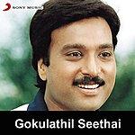 Deva Gokulathil Seethai