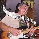 Vas Down Here In Waupoos