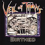 Veil Of Thorns Birthed