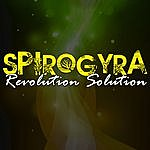 Spirogyra Revolution Solution