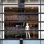 David Boswell Windows