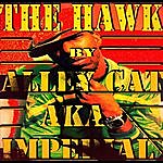Alley Cat The Hawk