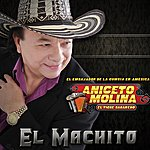 Aniceto Molina El Machito - Single
