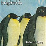 The Bright Side Slide And Dive
