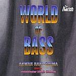 Sukshinder Shinda World Of Bass