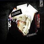 Belleruche Stormbird - Single